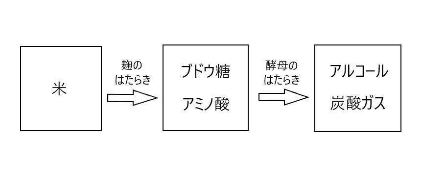 麹と酵母の働きを表した図
